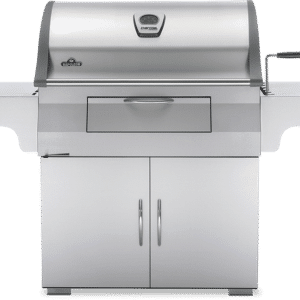 charcoal professional grill